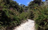 2, Excursión al Imponente Volcán Barú
