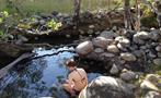 2, Horses & Hot Springs