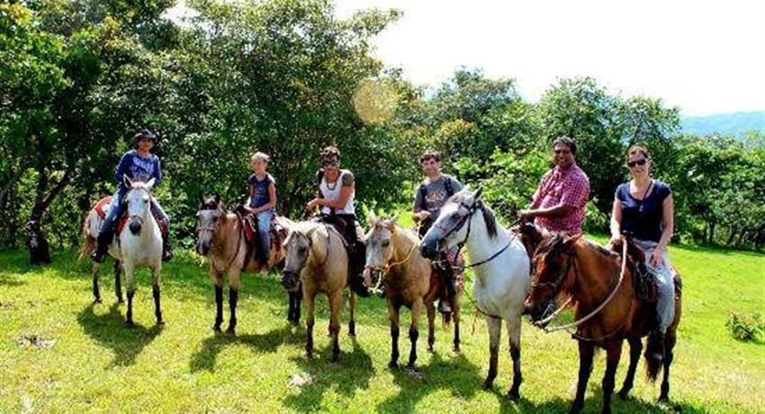 1, Horses & Hot Springs