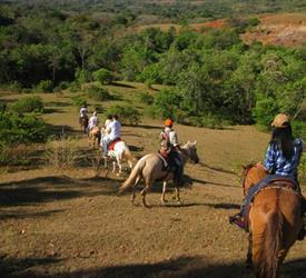 Caballos y Aguas Termales, Tours A Caballo  en Panamá