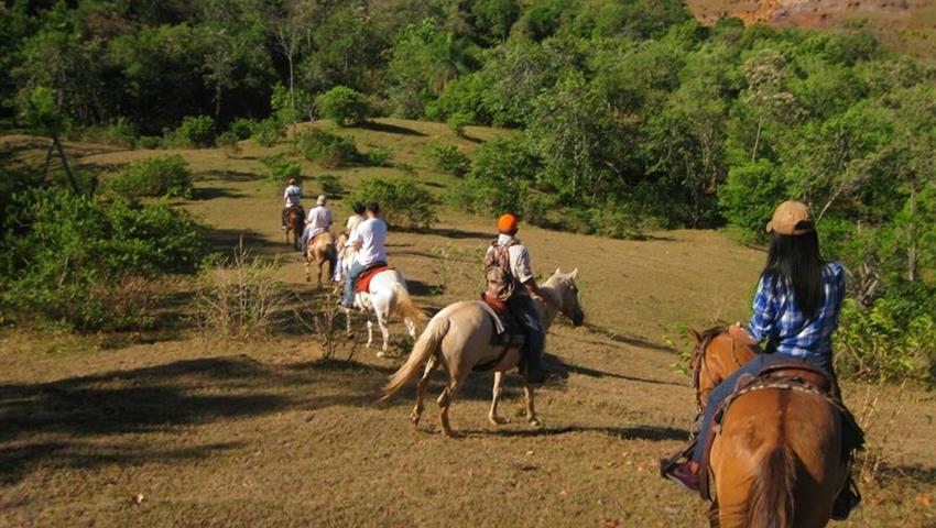 5, Horses & Hot Springs