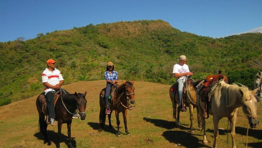 6, Horses & Hot Springs