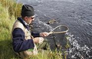 fishing of the day - tiqy, Break and Adventures in Upper River Tees