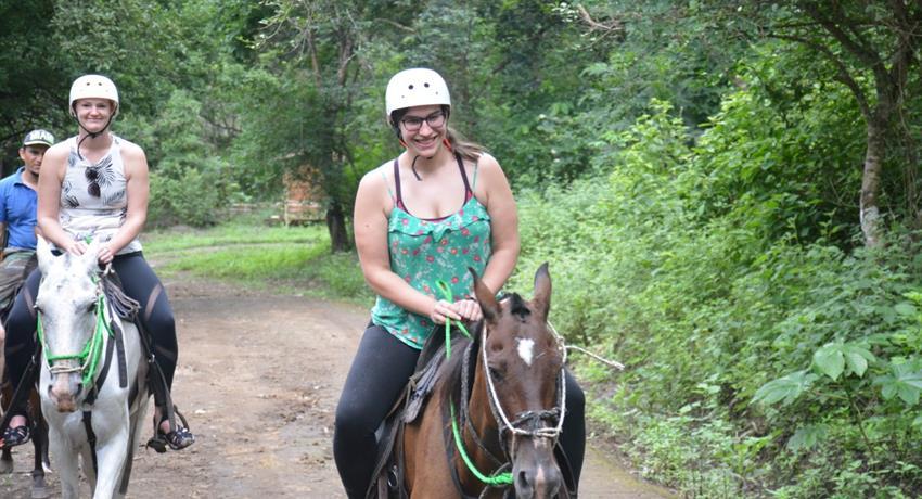 Horse, Buena Vista 8-Hour Adventure