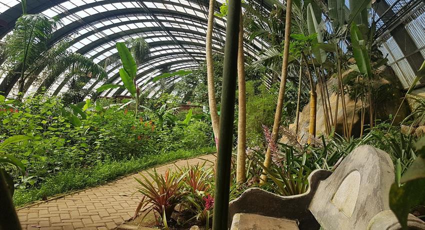 butterfly garden spaces, Butterfly Garden