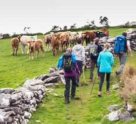 Caherdaniel, Derrynane, Sightseeing Tours in Ireland