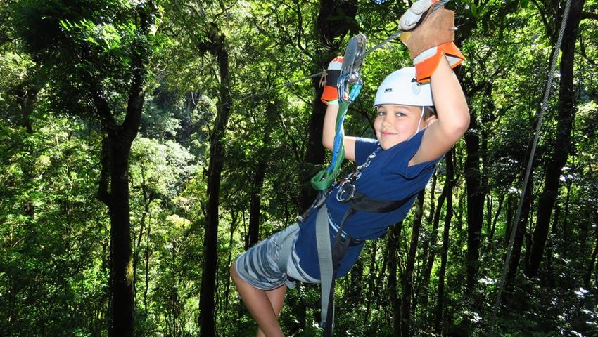 6, 12 Lines Canopy Tour