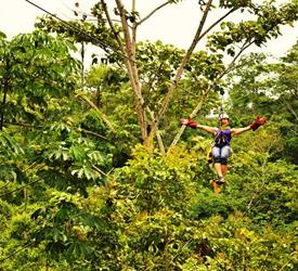 Jungle Experience with Canopy Tour, Canopy Tours  in Costa Rica