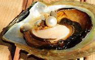 Cape Leveque perls, Cape Leveque