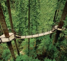 Puente colgante de Capilano y Grouse Mountain