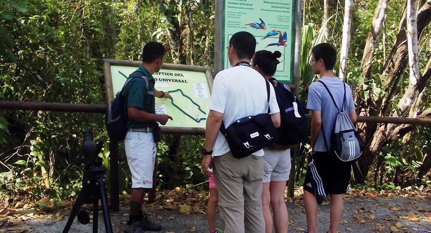 Guide, Carara National Park 6-Hour Tour