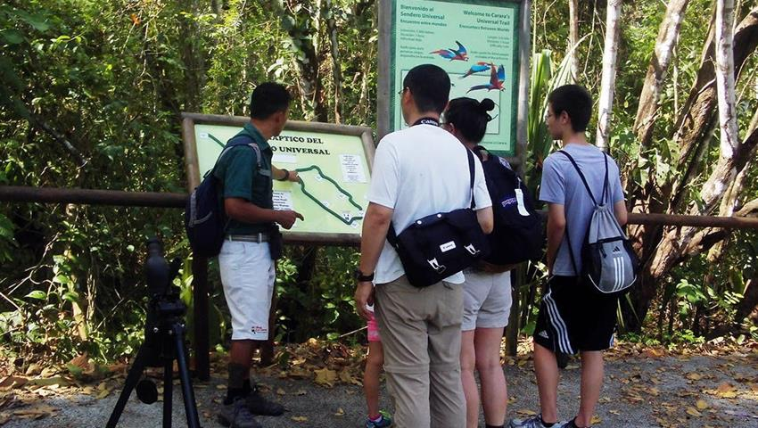 Guide, Carara National Park 6-Hour Tour