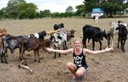 1, Cattle Farm, Cheese Factory and Beach Day
