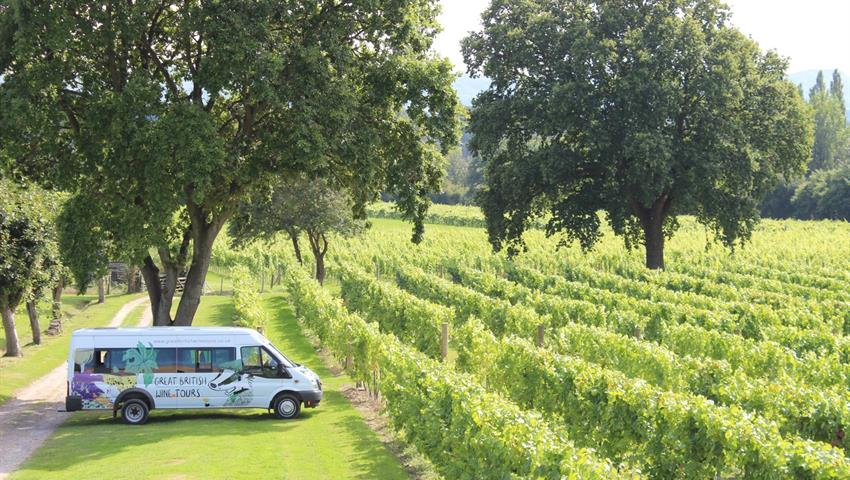 Cheese and Vineyard Tour with Great British 6, Cheese and Vineyard Tour