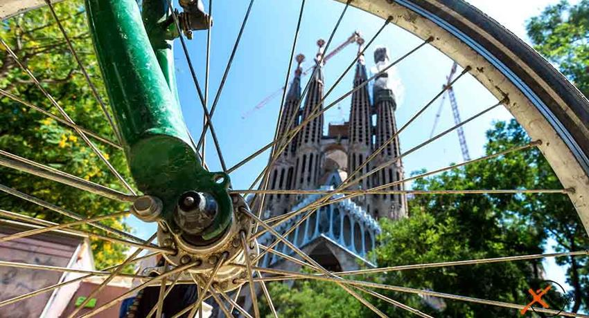 3, City Bike Tour
