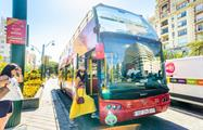 Hop on hop off Sightseeing Bus Stop, City Sightseeing Tour in Malaga