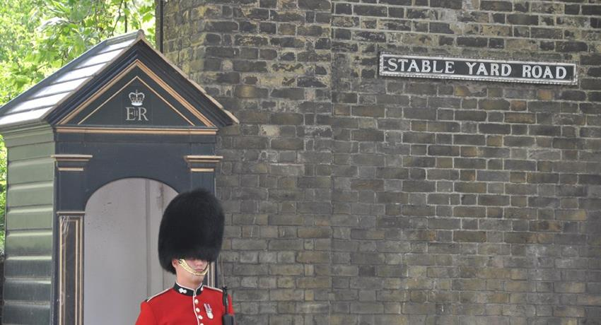 Guard of the buckingham palace, Classic London Walking Tour