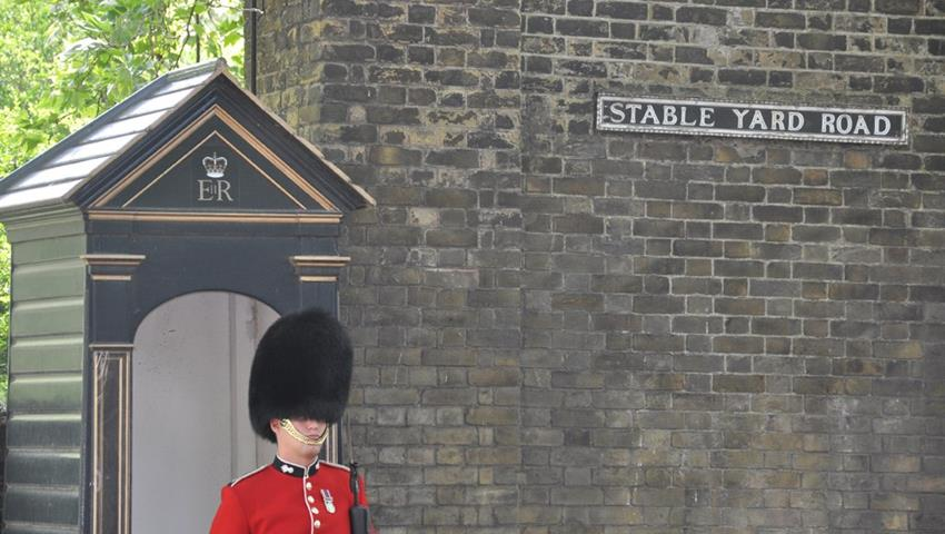 Guard of the buckingham palace, Classic London Walking Tour