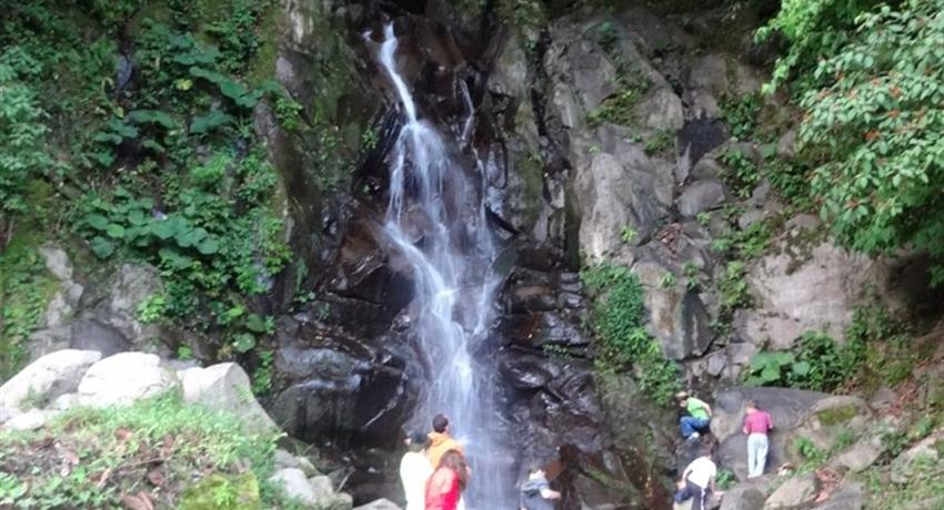 5, Cloud Forest Panoramic Tour