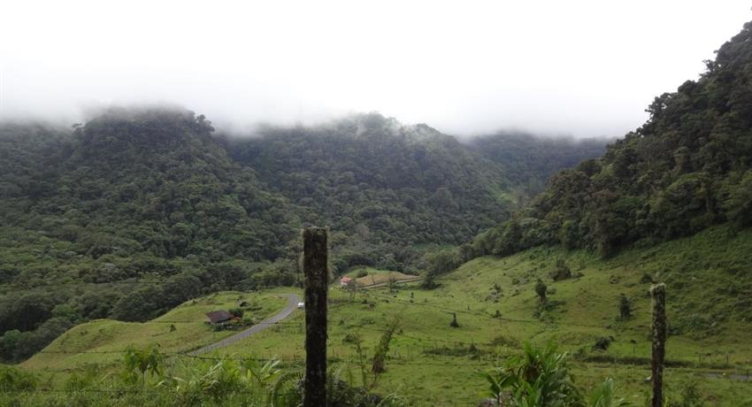 6, Cloud Forest Panoramic Tour