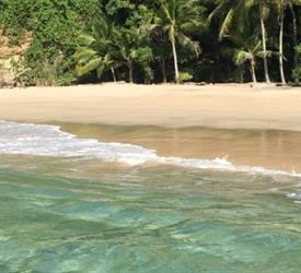 Pasadía en Isla Contadora