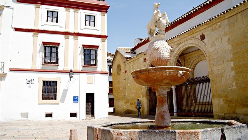 Main Plaza in Cordoba - tiqy, Cordoba From Granada