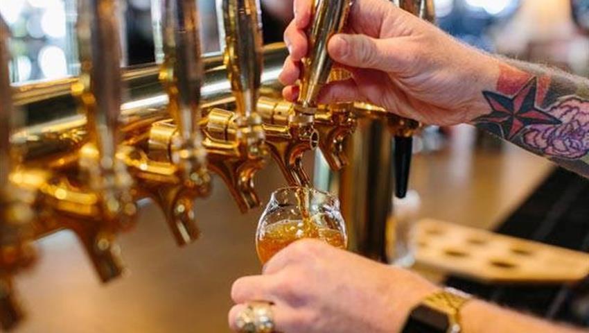 Calgary Craft Beer Tour, Tour Calgary Cerveza Artesanal