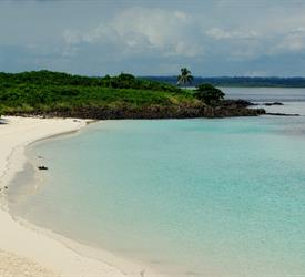 Iguana Island Snorkeling