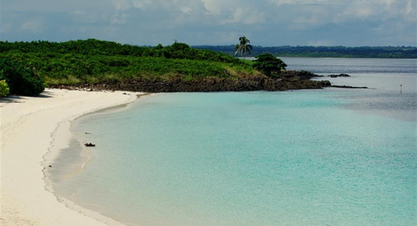 1, Iguana Island Snorkeling