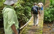 3, Las Tierras Altas de Herrera Panamá Eco Tour