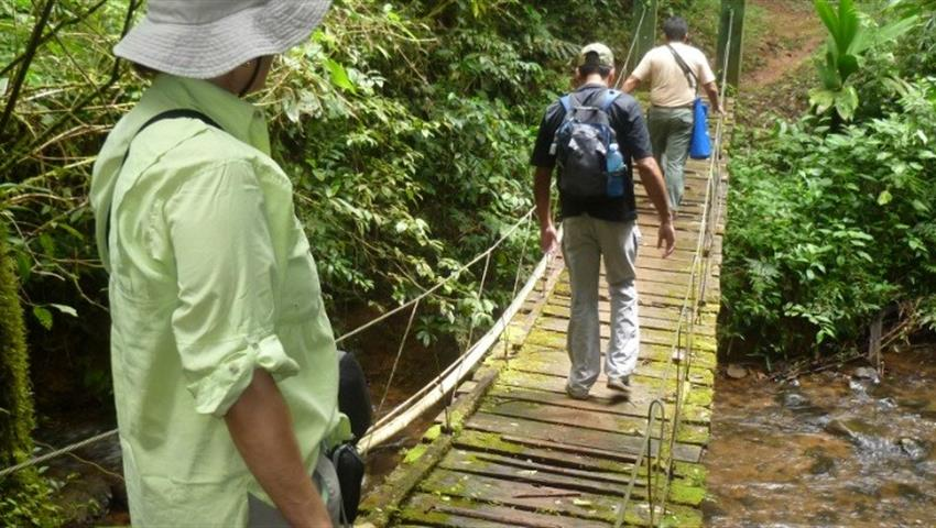 3, The Herrera Highlands Panama Eco Tour