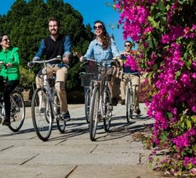 Daily Bike Tour in Sevilla, Bike Tours in Spain