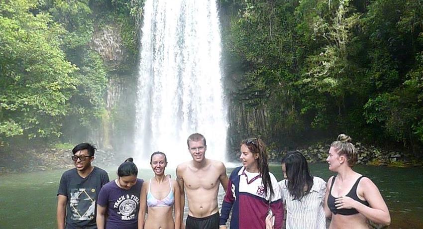 Day Tour of Atherton Tablelands Waterfalls Cairns, Day Tour of Atherton Tablelands Waterfalls Cairns