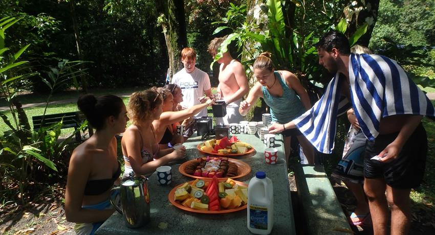 Atherton Tablelands Waterfalls Cairns lunch, Day Tour of Atherton Tablelands Waterfalls Cairns