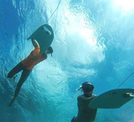 Tour en Deepboard por Isla Colón