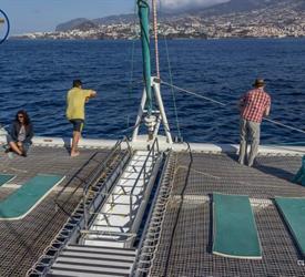 Desertas Islands Catamaran Trip, Water Activities in Madeira, Portugal