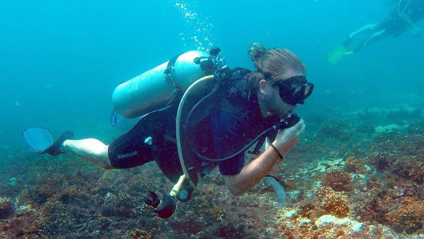 5, Clases de Buceo en Isla Coiba