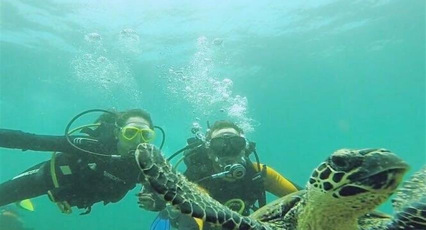 6, Discover Scuba Diving Course