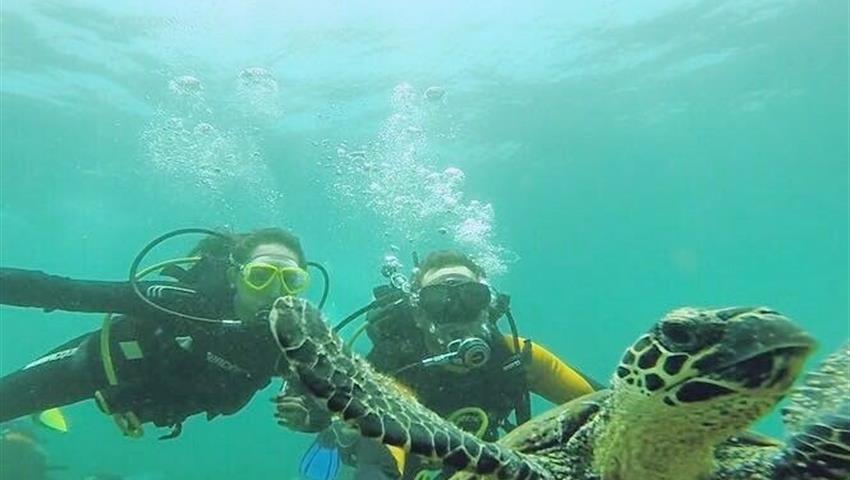 6, Clases de Buceo en Isla Coiba