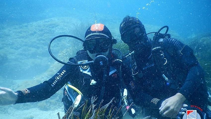 Dive day tour with friends, Dive Trip