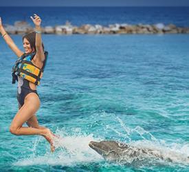 Dolphin Royal Swim at Dolphin Cove Ocho Rios