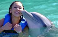 4, Dolphin Royal Swim at Dolphin Cove Ocho Rios