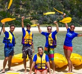 Dolphin View Kayak , Wildlife Experiences in Australia