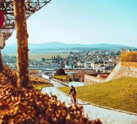Downhill Kick Bike Tour Wachau
