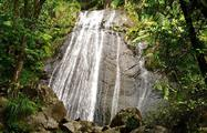 rainforest and bio bay combo waterfall, El Yunque Rainforest And Kayaking Combo Tour
