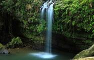 rainforest and bio bay combo blue waterfall, El Yunque Rainforest And Kayaking Combo Tour