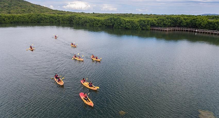 rainforest and bio bay combo girl kayakers lagoon, El Yunque Rainforest And Kayaking Combo Tour