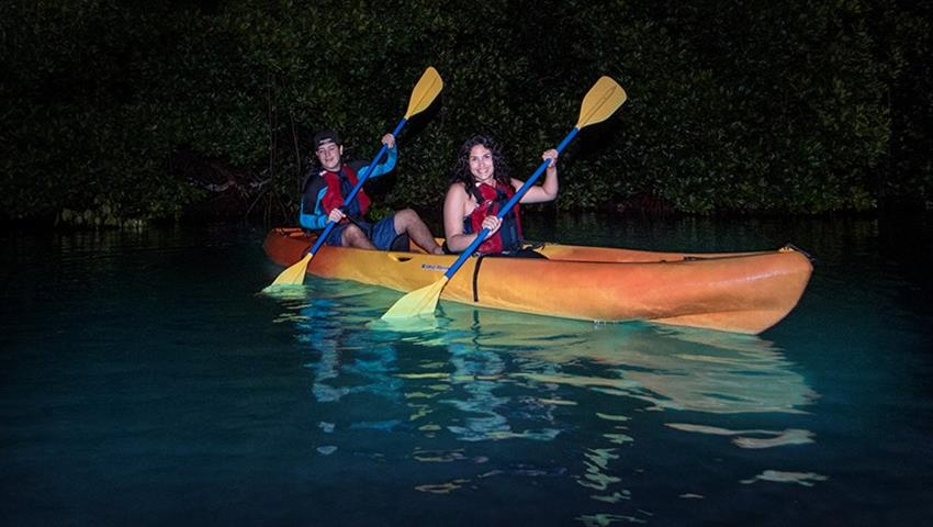 Rainforest and bio bay combo couple in night, El Yunque Rainforest And Kayaking Combo Tour