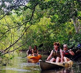 Eco Pass 3 Full Day Tours