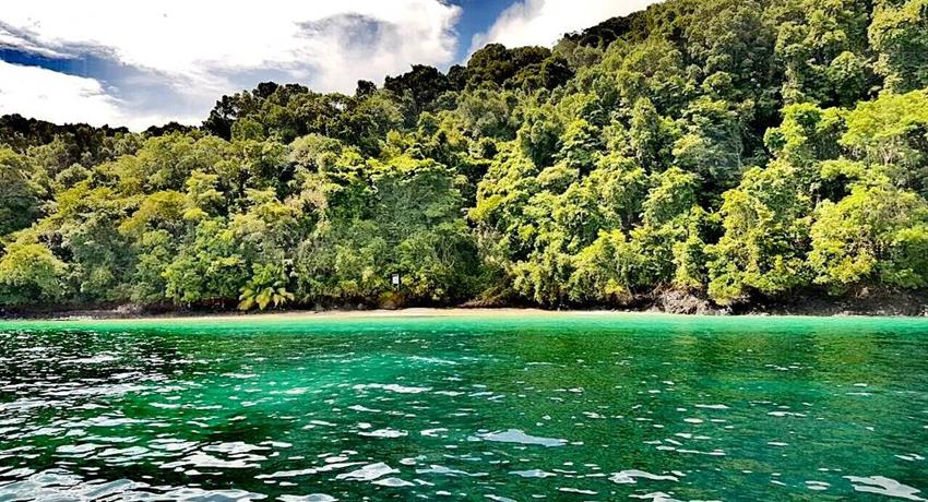 2, Ecotourism Snorkeling Full Day Tour
